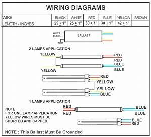 How To Wire Ballast 1 Wiring Diagram