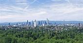 Frankfurt City Forest - Wikipedia