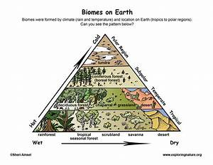Biomes Locations On Earth
