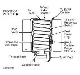 similiar ls diagram keywords ls1 alternator wiring diagram besides ls1 vacuum hose diagram together