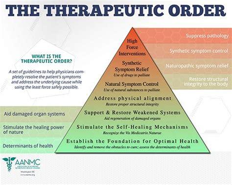 naturopathic therapeutic order junction naturopathic medicine