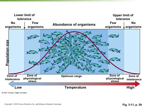 definition of temperature range ecology1