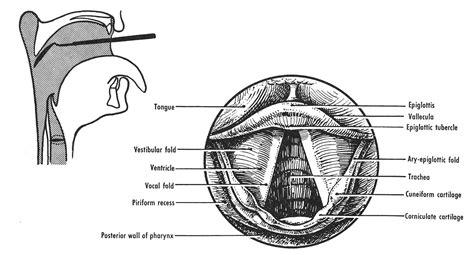 Figure 53-12