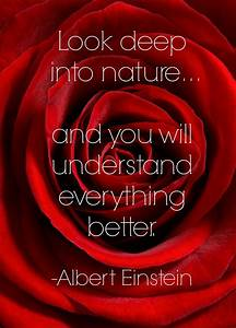 Garden Quotes: Best Gardening Quotes by Famous People