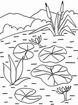 Coloring Lily Water Pages Pad Flower Printable Lilies Sheets Cool2bkids Flowers Drawing Painting Plants Plant Pads Patterns Getcolorings Floating Recommended sketch template