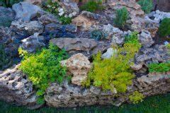 Pflanzen Für Steinbeet : bauerngarten eine auswahl mehrj hriger blumen ~ Orissabook.com Haus und Dekorationen