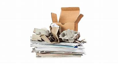 Paper Waste Sorting Guide Discarded Yo App