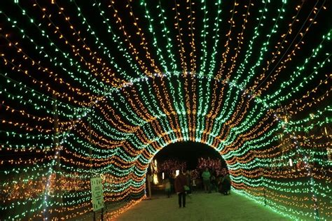 wild lights palm desert wildlights if you plan on going get your tickets on