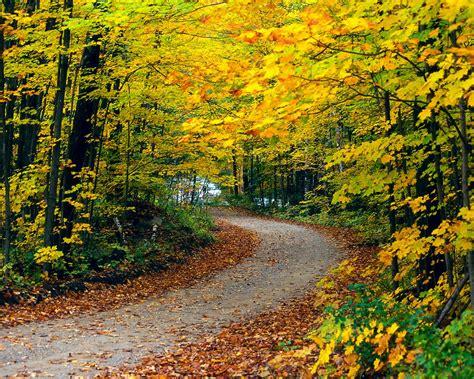 Beautiful Autumn Wallpapers Desktop by Iwallpapers Autumn Wallpapers
