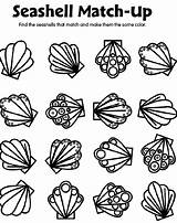 Seashell Coloring Pages Crayola Match Shells Sea Shell Printable Spring Preschool Seashells Matching Sheets Adults Getcoloringpages Gemerkt Von sketch template