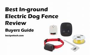 invisible and electric dog fence reviews in ground and With best rated invisible dog fence