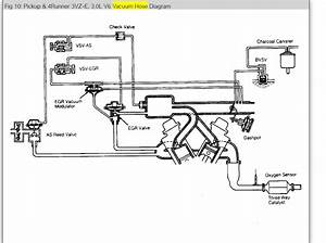 Bissell Proheat 2x Hose Diagram