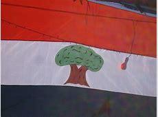 Oromo Flag Photo