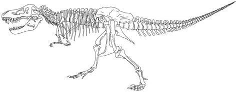 Kleurplaat Skelet Mens by Kleurplaten Dino Skelet Kleurplaten Dino Skelet 1 Books