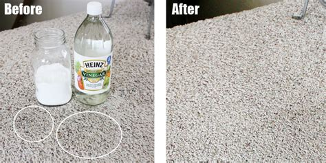 Getting Rid Of The Worst Cleaning Cat Vomit From Carpet Dixie Houston Simply Clean Care Prescott Cost To Install Carpeting Corporate Carpets Dupont Stainmaster Reviews Interface Tile Specifications Or Laminate In Bedrooms