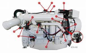 6cta 8 3 430  450 Diamond Engine Hoses