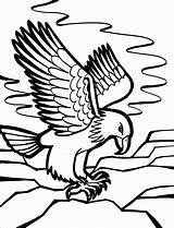 Coloring Pages Birds Eagle Knowing Kind Bird sketch template