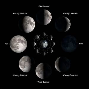 Moon Phases Chart | Search Results | Calendar 2015