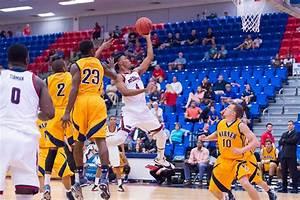 Men's basketball: strong defense, bench key in FAU's win ...