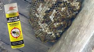 Se Débarrasser Des Guepes : ils tentent de se d barrasser d 39 un nid de gu pes et ~ Melissatoandfro.com Idées de Décoration