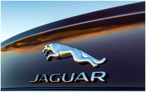 Jaguar Logo Hd Images Wallpapers 1080p Downloads Free