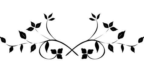 flourish floral swirl  vector graphic  pixabay