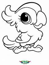 Coloring Bird Creative Tsgos sketch template