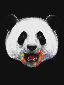 1000+ images about ♡LittlePanda♥ on Pinterest | Pandas ...