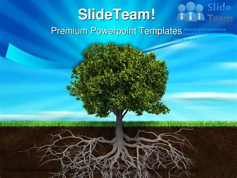 tree  roots nature powerpoint templates themes