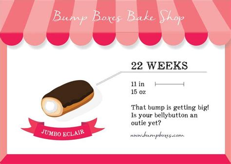 Bump Boxes  22 Weeks Pregnant  Baby Nieto  Pinterest. Sheraton Dallas Conference Center. Spanish For Grandmother Nashua Tire Wholesale. Orange County Town Car Dish Tv Price In Delhi. Best Payment Gateway For Small Business. Protein Synthesis Worksheet Answer Key. Nstar Home Heating Protection Plan. Divorce Lawyers In Fresno Ca. How To Start A Medical Billing Business