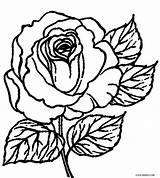 Coloring Rose Roses Printable Cool2bkids Crosses Sheets Cross Flower Bush Skull Getdrawings Drawing Getcolorings Colorings Tattoo Adult Southwestdanceacademy sketch template