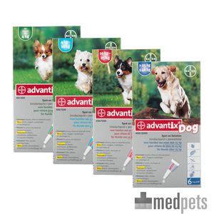 advantix chien anti puces  tiques commander