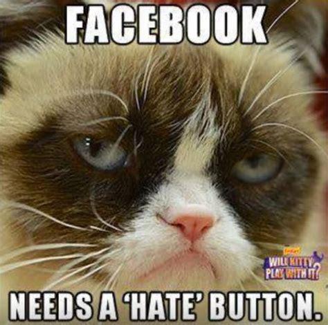 Grumpy Meme Face - facebook needs a hate button funny grumpy cat meme picture