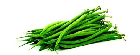 cuisiner des haricots verts en boite haricots verts