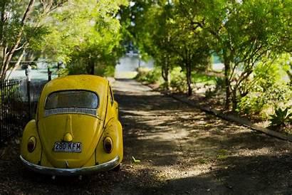 Beetle Volkswagen Vw Wallpapers Background Desktop Computer