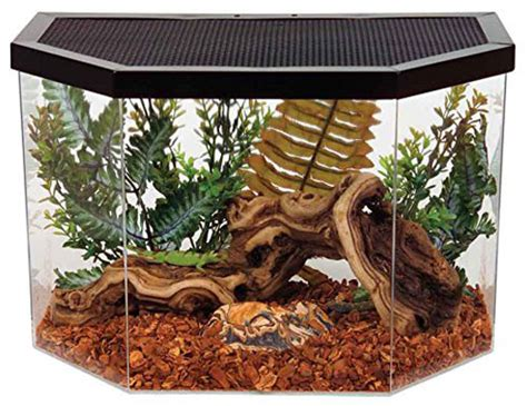 Best Snake Terrarium How Much Carpet For 12 Stairs Fix Creaking Floors Through Best Cleaning Solution Pet Stains And Odors Is Red Makeup In Real Life To Get Rid Of Nail Polish On Your Vacuum Cleaner Plush Uk Do U Candle Wax Out The