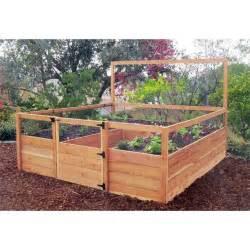 raised enclosed garden gardening pinterest gardens