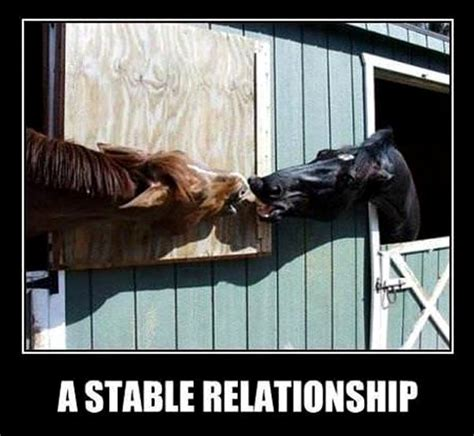 Funny Relationship Meme - funny memes about relationships quotes