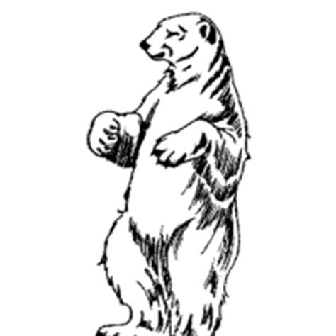 polar bear standing coloring pages surfnetkids