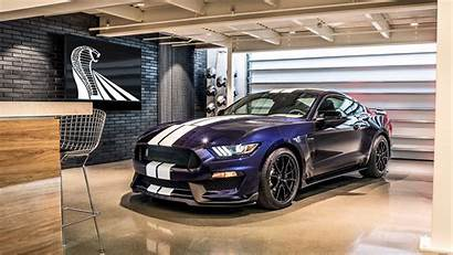 Shelby Gt350 Mustang Ford