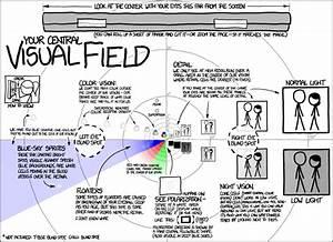 Xkcd  Visual Field
