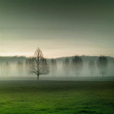 landscape photography  fantastic  photography