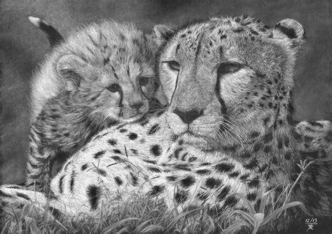 Dessin Sur Papier Noir Cheetah Gu 233 Pards Crayon Blanc Sur Papier Noir Dessin En Format 42 X 30 Cm Les Dessins De