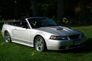 2001 Ford SVT Mustang Cobra For Sale | Suffield Connecticut