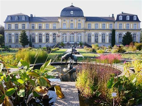 Cafe Remise Botanischer Garten Bonn by 25 Best Ideas About Bonn On Bonn Germany