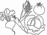 Vegetables Coloring Vegetable Pages Printable Fruits Fruit Colouring Flower Drawing Types Various Printables Bestcoloringpagesforkids Books Sheets Templates Popular sketch template