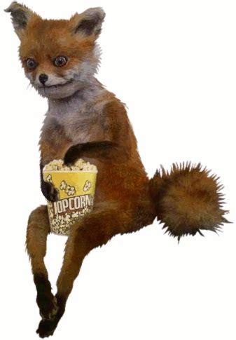 Fox Meme - adele the taxidermist of uproroty fox morse talks the ransom note