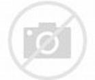 Donna Dixon – Bio, Facts, Family Life of Actress