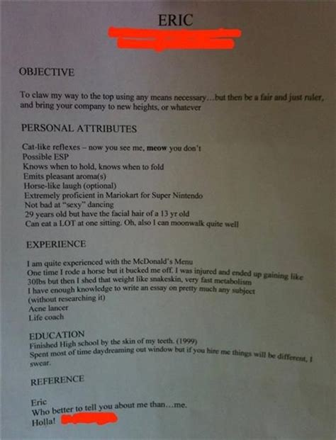 the most creative or stupidest resume bit rebels