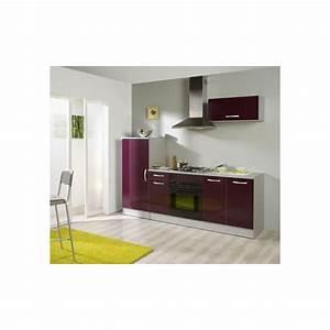 Cuisine Non équipée : bloc cuisine quip e panel meuble magasin de meubles en ligne ~ Melissatoandfro.com Idées de Décoration
